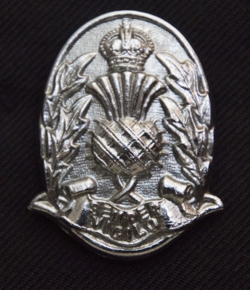 Cap Badge_Panorama1 sm